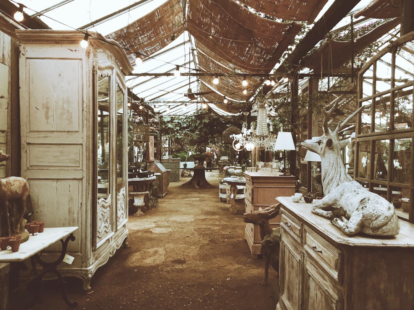 my-wanderlust-notes-nel-verde-del-parco-di-richmond-petersham-nurseries