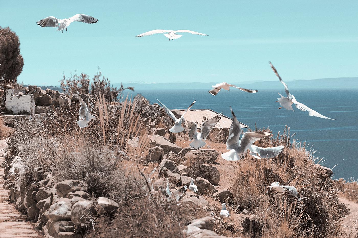 my-wanderlust-notes-una-settimana-tra-le-magie-del-peru-titicaca